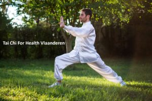 Webdesign project Tai Chi for Health Vlaanderen